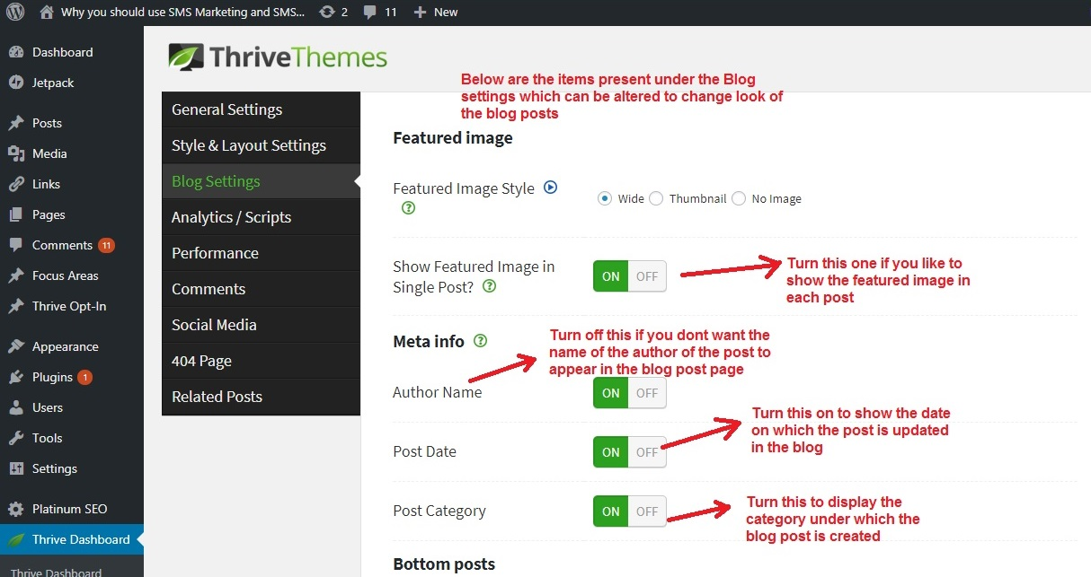Thrive Themes blog settings