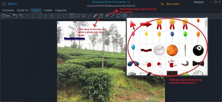 Ashampoo Photo Commander objects insert photo